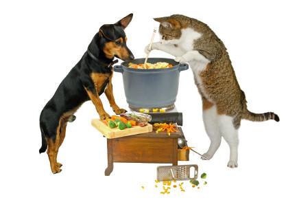 Petfood: diete bilanciate per cani e gatti