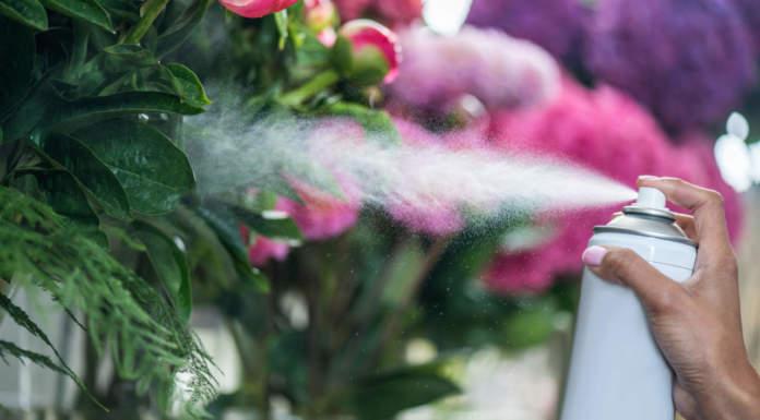 decreto per utilizzatori non professionali di prodotti fitosanitari