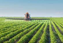 agricoltura competitiva compag