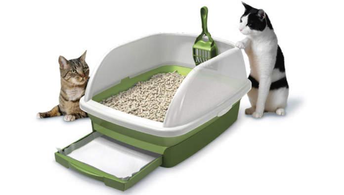 come scegliere la lettiera per il gatto
