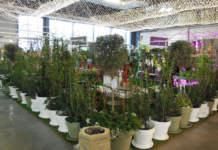 prodotti per il negozio di giardinaggio