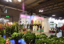 myplant & garden 2019