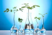 biostimolanti in agricoltura
