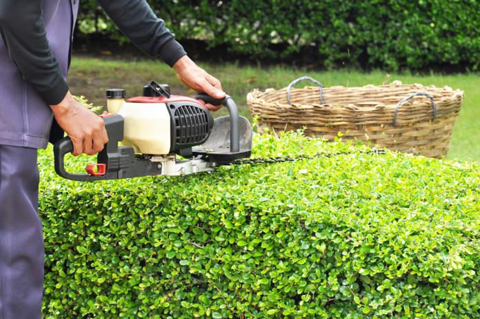 attrezzature e macchine per il giardinaggio