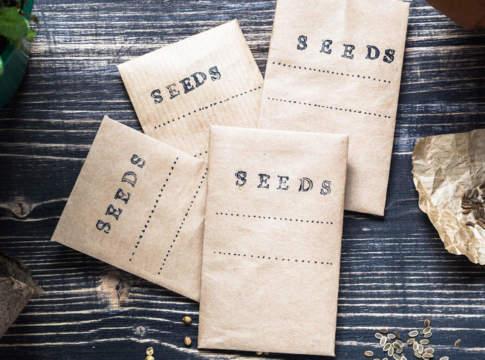 buste di sementi hobbystiche