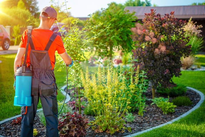 prodotti fitosanitari per utilizzatori non professionali