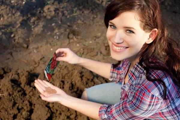 hobbysta con sementi in mano