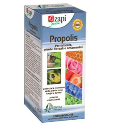 Zapi Propolis concentrato