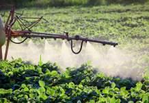 etichetta prodotti fitosanitari