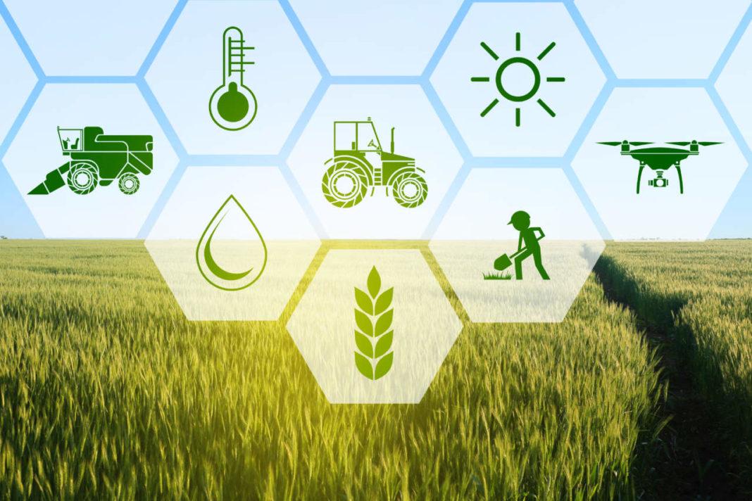Agricoltura 4.0: sicurezza, sostenibilità e tracciabilità