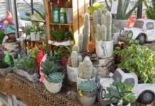 mercato giardinaggio italia