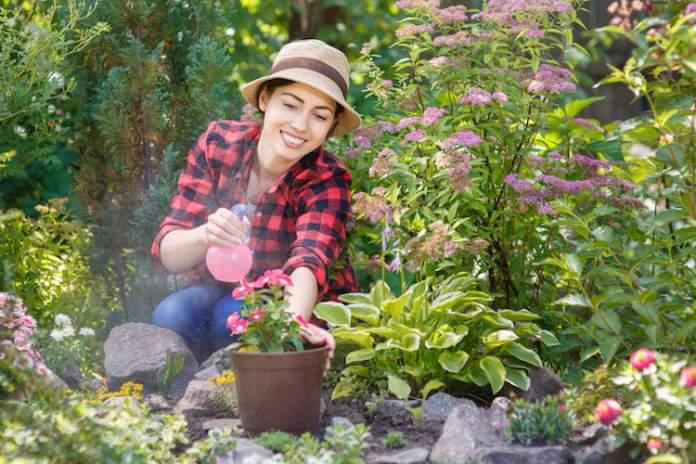 novità per il garden