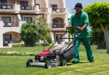 manutenzione del verde
