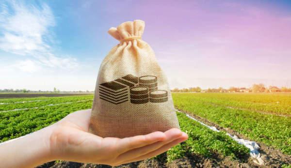 sostegno finanziario nel settore agricolo