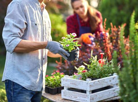 prodotti giardinaggio 2021