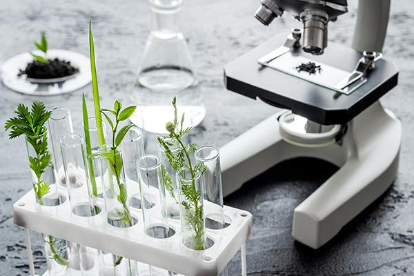 normativa biostimolanti