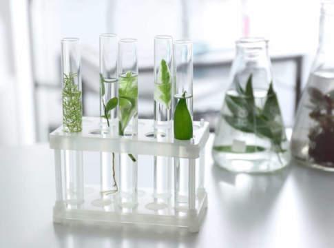 biostimolanti mercato
